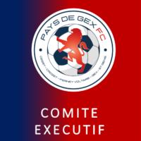 COMITE EXECUTIF PAYS DE GEX FC